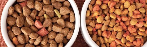 Alimenti secchi per animali