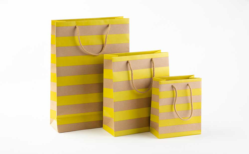 Shopping bags in carta