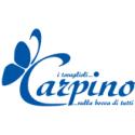 Carpino Srl