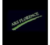 Ars Florence Srl