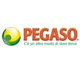 Pegaso S.r.l.