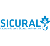Sicural Srl Cons