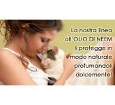 Professional shampoo for cats with neem oil