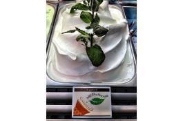 Semilavorato per gelato alla menta di Pancalieri