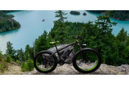 Biciclette elettriche con pedalata assistita E-Bike