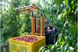 Hydraulic forklifts for agriculture