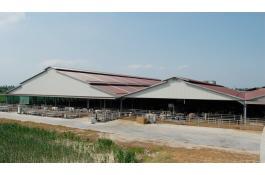 Realizzazione impianti completi per allevamenti