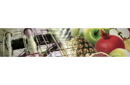 complete lines for fruit processing