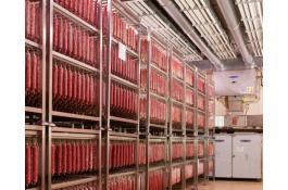 Impianti industriali per lavorazione salame