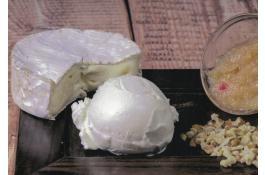 Semilavorato per gelato gourmet gusto Camembert, Mostarda Vicentina e Noci