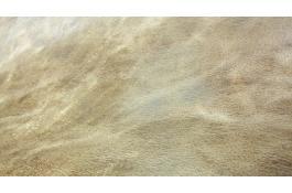 Pelle di cammello per calzature e pelletteria