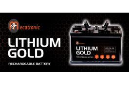 Batteria Litio Ferro Fosfato per camper Lithium Gold, con app BT per il controllo