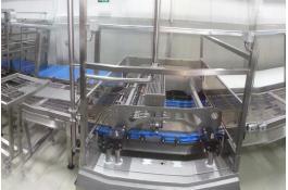 Linea di produzione muffin, cupcake e plumcake