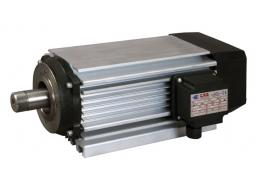 Reduced size electric motor series E and R