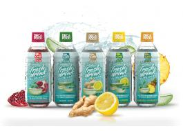 Aloe Vera-based drink without preservatives or coloring sugars