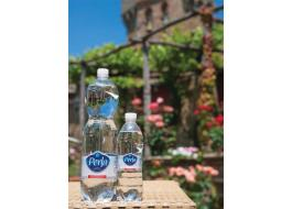 Mineral water in PET Perla