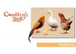 Alimenti per animali da fattoria Country's Best