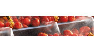 Macchine trasformazione pomodoro
