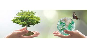 Soluzioni per assorbimento inquinanti
