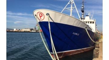 Lavorazione prodotti ittici