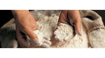 Produzione farina