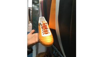Cellulosa per calzature