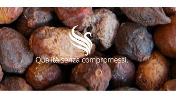 Prodotti a base di olio di Argan