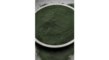 Produzione alga spirulina in polvere