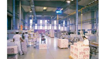 Produzione coni arrotolati per gelateria