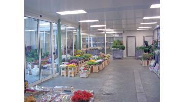Impianti per conservazione settore florovivaistico