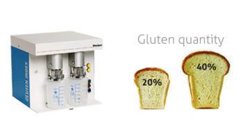 Controllo quantità e qualità del glutine nel grano