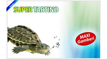 Mangime per tartarughe, anfibi