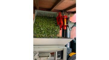 Rovesciatore idraulico per carrelli elevatori