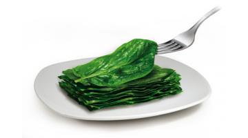 Spinaci surgelati in foglia per foodservice