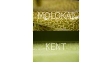 Essex, lavorazioni Molokai - Kent