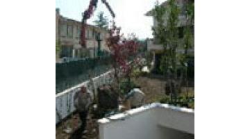 Terriccio per giardinaggio