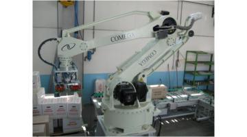 Robot per pallettizzazione