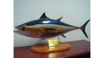 Produzione trofei per pesca