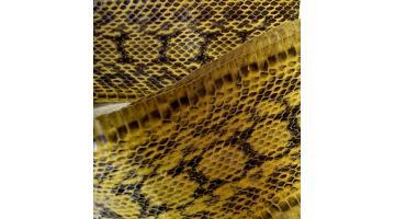 Pelle Elaphe radiata