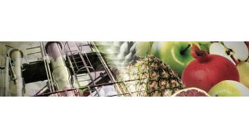 Linee complete per la lavorazione della frutta Fenco
