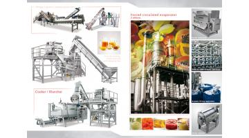 Linee complete produzione purea naturale e concentrata Fenco