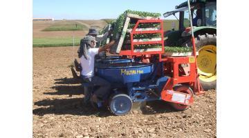 Trapiantatrice multipla per agricoltura