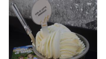 Basi latte per gelato artigianale