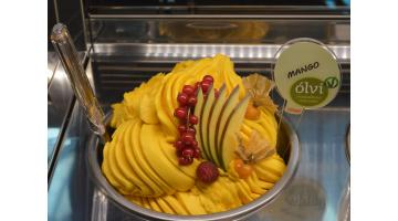 Basi gelato mango vegan
