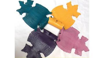 Pelli di caimano rifinizione Verglass
