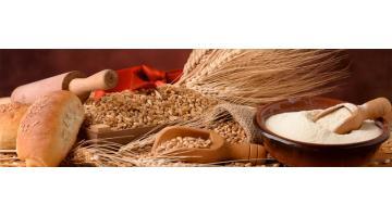 Farine da agricoltura biologica