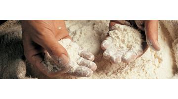 Farine tradizionali grano tenero
