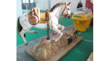 Electromechanical horse for children