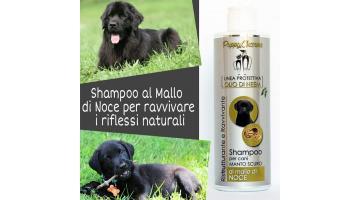 Shampoo per cani manto scuro all'olio di neem