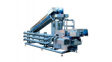 Fruit and vegetable washing and treatment system